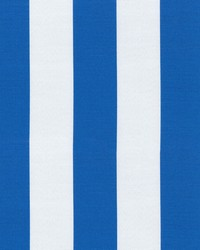 OD Canopy Stripe Cobalt by