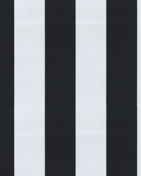 OD Canopy Stripe Onyx by