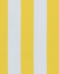 OD Canopy Stripe Lemon by