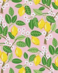 OD Lemon Tree Blush by