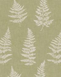 Fern Imprint Celery by