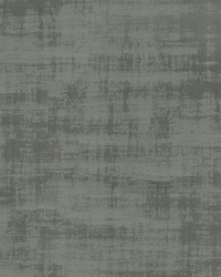 Modern Stucco Thyme by