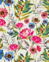 Flower Mania Petunia by