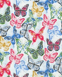 P K Lifestyles Social Butterfly Petunia Fabric