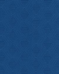 HEX APPEAL       HEL COBALT by