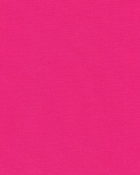 P K Lifestyles SNS Sunburst Raspberry Fabric