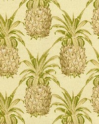 P K Lifestyles SNS Pineapple Grove Natural Fabric
