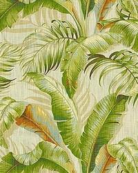 Palmiers Sunsplash by