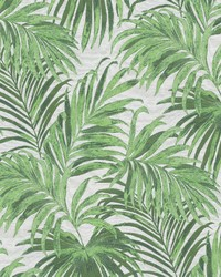 Isle of Palm Mojito by