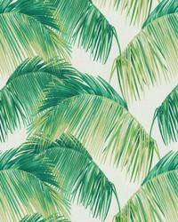 TBO Palmas Verde by