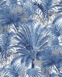Monteverde Azul by