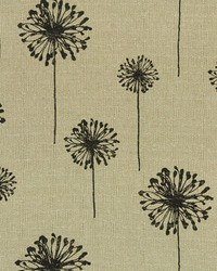 Dandelion Black Denton by