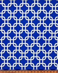 Blue Trellis Diamond Fabric  Gotcha Cobalt White