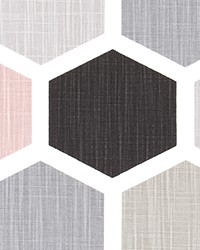 Hexagon Blush Slub Canvas by