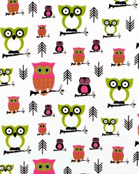 Pink Birds Fabric  Hooty CandyPink Chartreuse