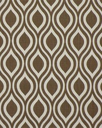 Brown Circles and Swirls Fabric  Nicole Italian Brown Drew