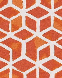 ODT Celtic Marmalade Polyester by
