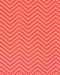 Outdoor Chevron Indian Coral by