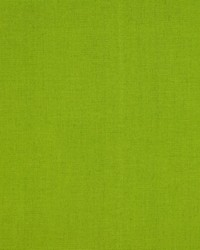 Outdoor Dyed Greenage by