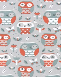 Owls Shade by