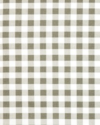 Plaid Storm by