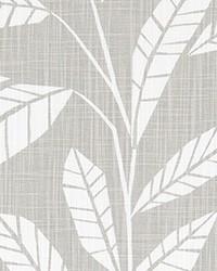 Samos French Grey Slub Canvas by