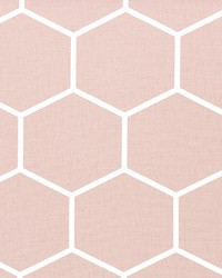 Shapes Blush by