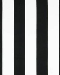 Stripes Black White by
