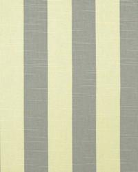 Stripe Coastal Gray Nat Slub by