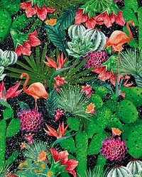 Succulent Garden Adhesive Film by  Brewster Wallcovering