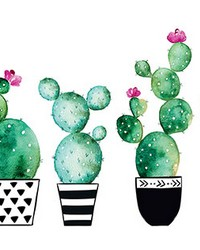 Watercolor Cactus Wall Decals by