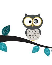 Eye Hole Owl Wall Decals by