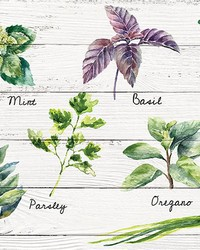 Shabby Spices Kitchen Panel by