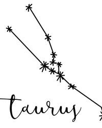 Taurus Wall Art Kit by
