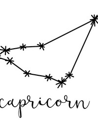 Capricorn Wall Art Kit by