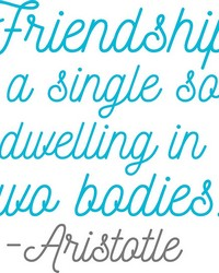 Friendship Soul Wall Quote by