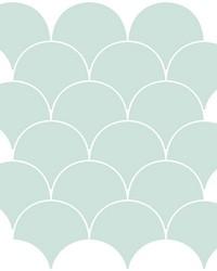 Shell Peel & Stick Backsplash Tiles by