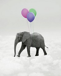 Elephant And Balloons Wall Mural by