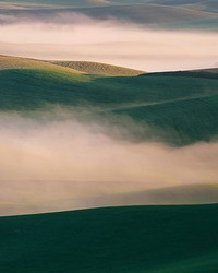 Misty Hills Wall Mural by