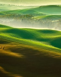 Rolling Green Hills Wall Mural by