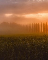 Tuscany Sun Rising Wall Mural by