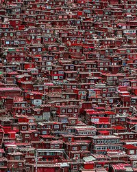 Red Houses China Wall Mural by