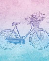 Groovy Vintage Bicycle Wall Mural by
