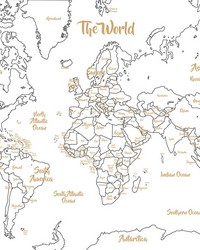 Glam Dry Erase Map by