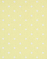 Clarke and Clarke Dotty F0063 Yellow Fabric