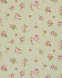 Clarke and Clarke Rosebud F0299 Sage Fabric