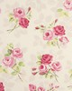 Clarke and Clarke NANCY F0361 CHINTZ