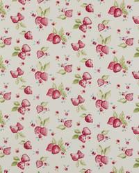 Strawberry Multi by