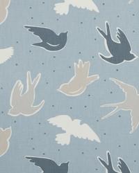 Seabirds Marine by