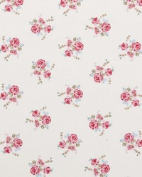 Clarke and Clarke Fifi F0439 Chintz Fabric
